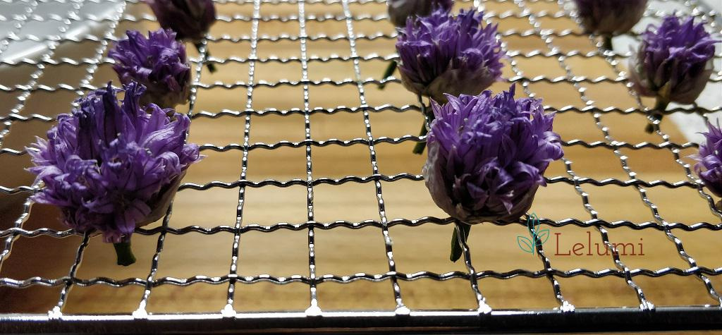 Dehydrated chives flowers
